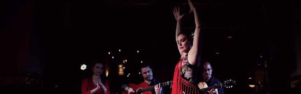Flamenco Soiree in Madrid: Flamenco Dance Performance and Evening of International Networking at the Elegant L2 Lounge in Georgetown on Wednesday, January 15, 2020 at 7:00 PM